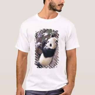 Asia, China, Sichuan Province. Giant Panda up T-Shirt