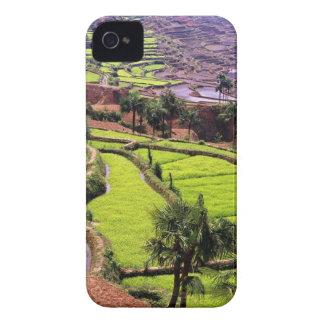 Asia, China, Yunnan, Honghe.  Las terrazas del arr Case-Mate iPhone 4 Carcasa