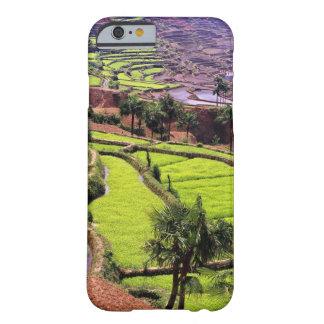 Asia, China, Yunnan, Honghe.  Las terrazas del Funda De iPhone 6 Barely There
