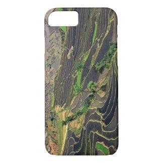 Asia, China, Yunnan, Honghe. Terrazas del arroz Funda iPhone 7