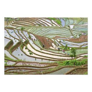 Asia, China, Yunnan, Jinping. Gente nativa de Yi Cojinete