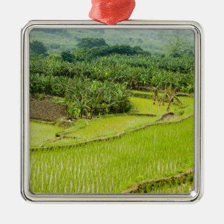 Asia, China, Yunnan Province, Honghe. Banana Metal Ornament