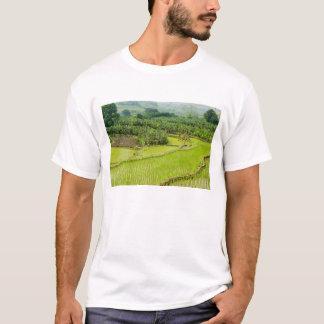 Asia, China, Yunnan Province, Honghe. Banana T-Shirt