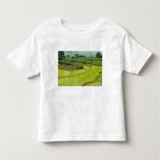 Asia, China, Yunnan Province, Honghe. Banana Toddler T-shirt