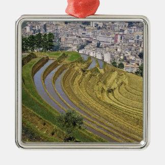 Asia, China, Yunnan Province, Jinping. Jinping Metal Ornament