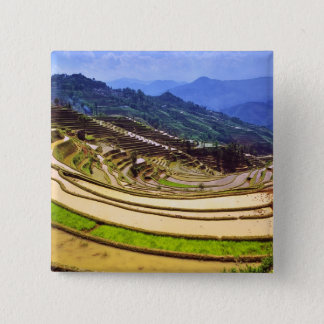Asia, China, Yunnan Province, Yuanyang County. Button