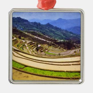 Asia, China, Yunnan Province, Yuanyang County. Metal Ornament