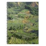 Asia, China, Yunnan, Yuanyang. Pattern of green 2 Spiral Note Book