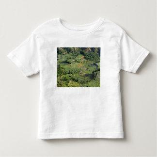 Asia, China, Yunnan, Yuanyang. Pattern of green 2 Toddler T-shirt