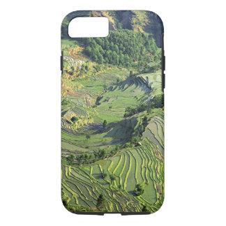 Asia, China, Yunnan, Yuanyang. Pattern of green iPhone 8/7 Case