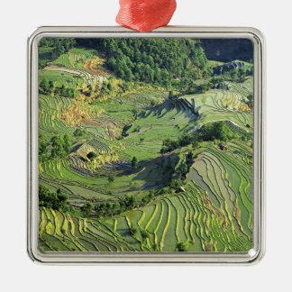 Asia, China, Yunnan, Yuanyang. Pattern of green Metal Ornament