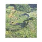 Asia, China, Yunnan, Yuanyang. Pattern of green Notepad