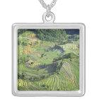 Asia, China, Yunnan, Yuanyang. Pattern of green Silver Plated Necklace