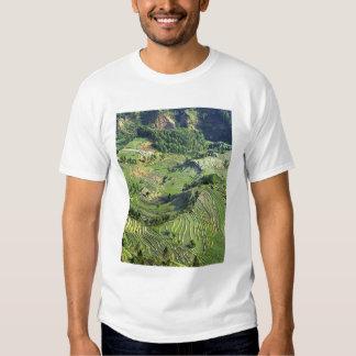 Asia, China, Yunnan, Yuanyang. Pattern of green T-Shirt