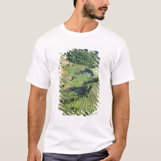 Asia, China, Yunnan, Yuanyang. Pattern of green T-Shirt