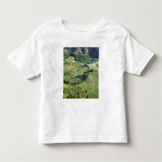 Asia, China, Yunnan, Yuanyang. Pattern of green Toddler T-shirt