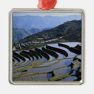 Asia, China, Yunnan, Yuanyang. Rugged Metal Ornament