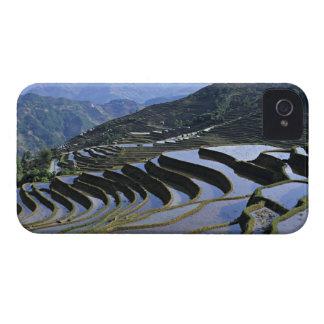 Asia, China, Yunnan, Yuanyang. Rugoso Case-Mate iPhone 4 Protectores