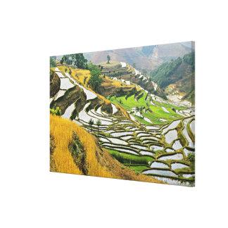 Asia, China, Yunnan, Yuxi Prefecture; Yuanjiang. Canvas Print