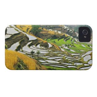 Asia, China, Yunnan, Yuxi Prefecture; Yuanjiang. iPhone 4 Cover