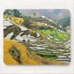 Asia, China, Yunnan, Yuxi Prefecture; Yuanjiang. Mouse Pad