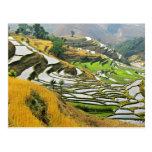 Asia, China, Yunnan, Yuxi Prefecture; Yuanjiang. Postcard