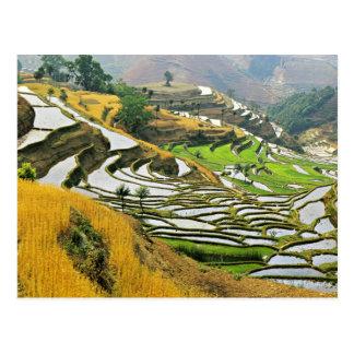Asia, China, Yunnan, Yuxi Prefecture; Yuanjiang. Postcards