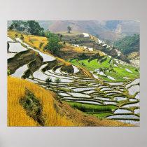 Asia, China, Yunnan, Yuxi Prefecture; Yuanjiang. Poster