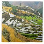 Asia, China, Yunnan, Yuxi Prefecture; Yuanjiang. Tile