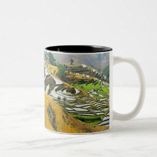 Asia, China, Yunnan, Yuxi Prefecture; Yuanjiang. Two-Tone Coffee Mug