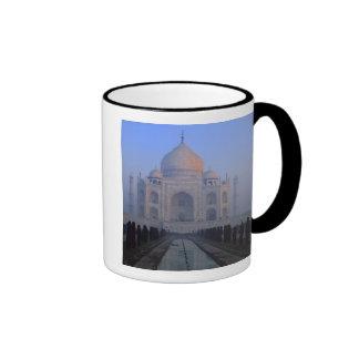 Asia; India; Agra. Taj Mahal. Mug