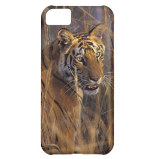 Asia, India, Bandhavgarth National Park, A iPhone 5C Covers