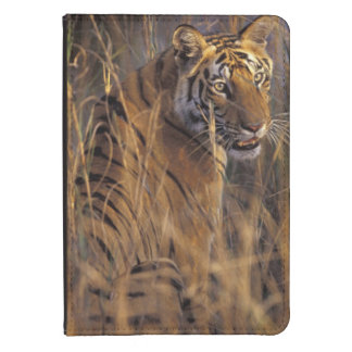 Asia, India, Bandhavgarth National Park, A Kindle 4 Cover