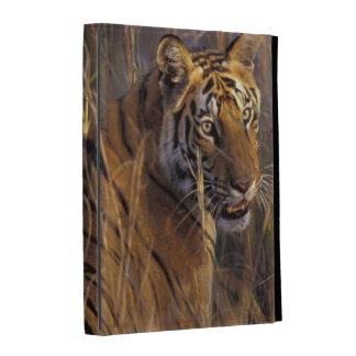 Asia, India, Bandhavgarth National Park, A iPad Folio Covers