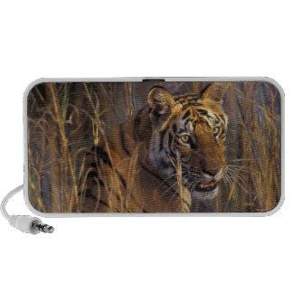 Asia, India, Bandhavgarth National Park, A iPhone Speaker