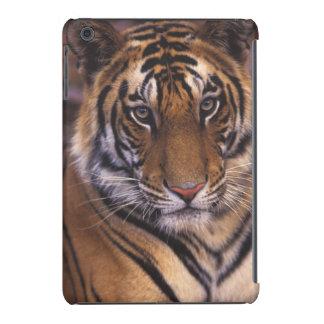 Asia, India, Bandhavgarth National Park, iPad Mini Cases