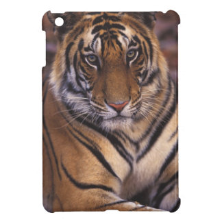 Asia, India, Bandhavgarth National Park, iPad Mini Case