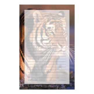 Asia, India, Bengal tiger Panthera tigris); Stationery