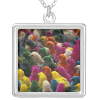 Asia, India, Karnataka, Mysore. Colored chicks Necklace