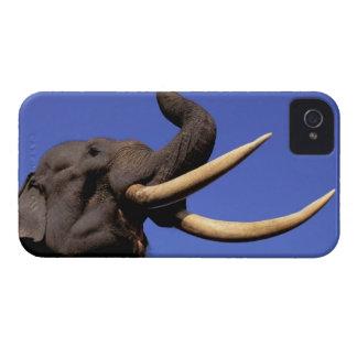 Asia, India, Kaziranga National Park, Assam. iPhone 4 Case