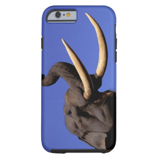 Asia, India, Kaziranga National Park, Assam. Tough iPhone 6 Case