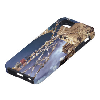 Asia, India, Ladakh, Leh. Known as Little iPhone 5 Covers