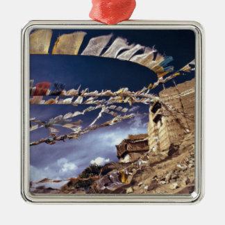 Asia, India, Ladakh, Leh. Known as Little Christmas Ornament