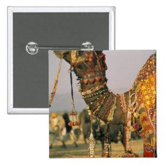 Asia, India, Pushkar. Camel Shamu , Pushkar 2 Inch Square Button