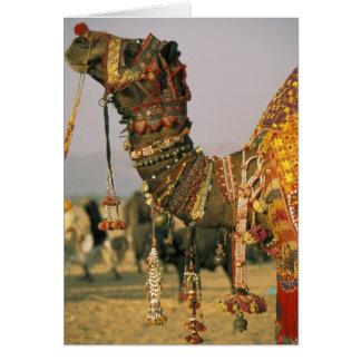 Asia, India, Pushkar. Camel Shamu , Pushkar Greeting Card