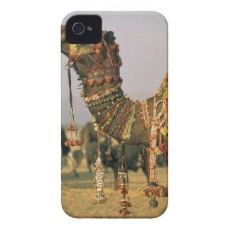 Asia, India, Pushkar. Camel Shamu , Pushkar iPhone 4 Case-Mate Case