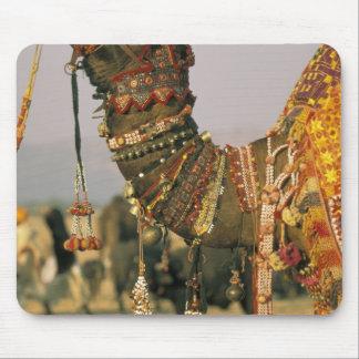 Asia, India, Pushkar. Camel Shamu , Pushkar Mouse Pad