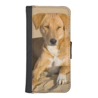 Asia, India, Rajasthan, Jaisalmer, Thar iPhone SE/5/5s Wallet Case