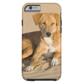 Asia, India, Rajasthan, Jaisalmer, Thar Tough iPhone 6 Case