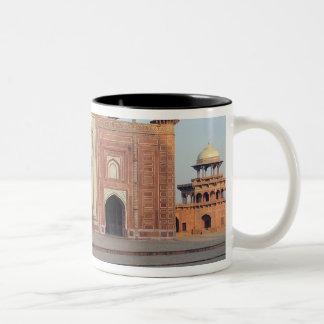 Asia, India, Uttar Pradesh, Agra. On the Mug